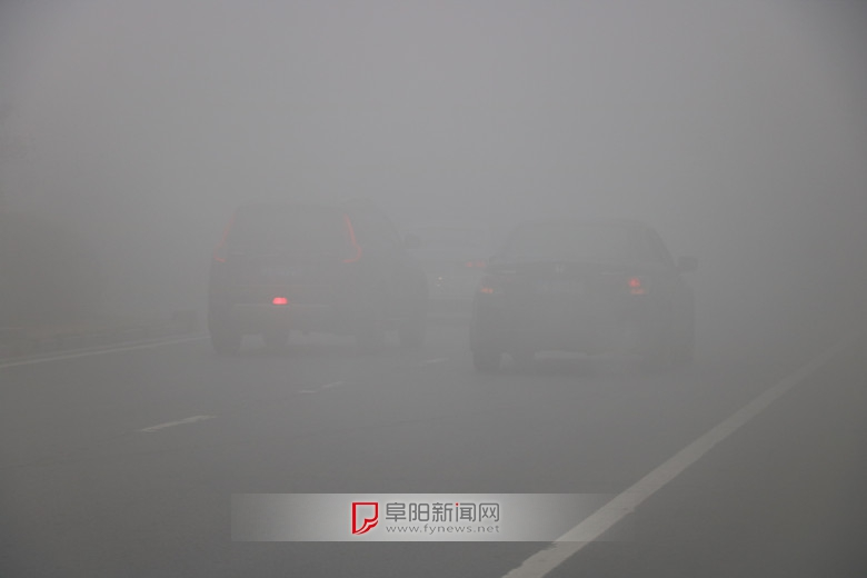 雾中景色31.jpg