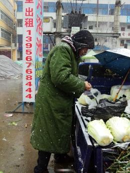 雪中卖菜人