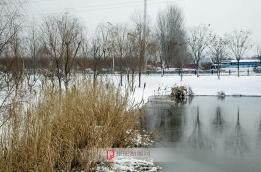 七渔河雪景