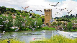佛罗轮萨的碉楼