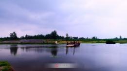 我也发几张界首两弯湿地的风景