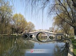 春风吹绿河岸柳