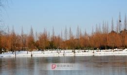 淮河公园雪景