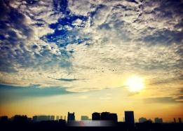 兹晨瑞气阳和早