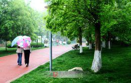 微雨时的文峰公园晚春