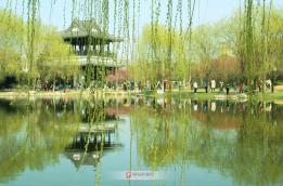 春风又绿梅园岸