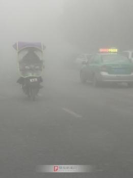 今天的雾好大啊
