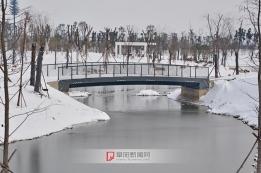 陶子河公园雪景