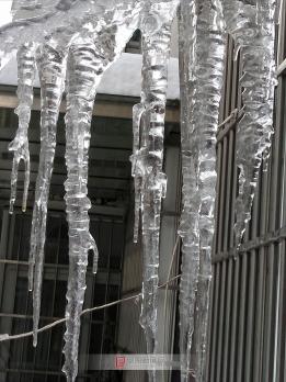 我家窗外的冰凌条
