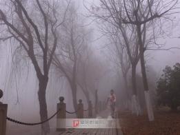 阜阳城罕见的雾霾天气-2013年