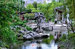 上海古猗园一角