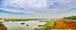 湿地四里湖