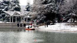 公园湖畔雪景